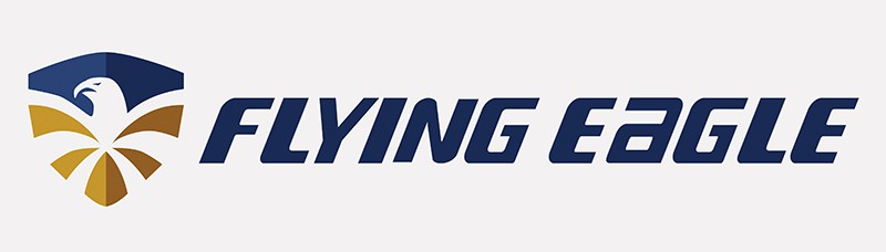 Logo hãng giày patin Flying Eagle